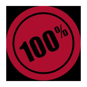 СКИДКА 100%